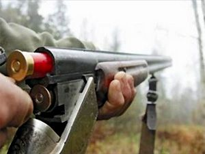 ружье, охота