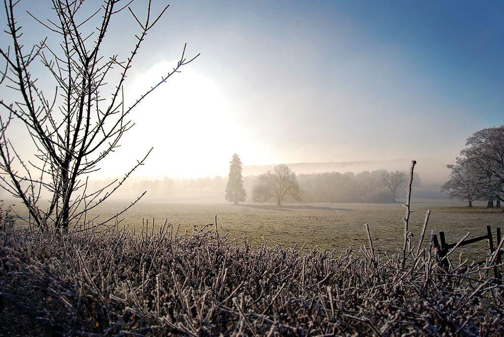 В Украине ожидаются заморозки