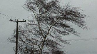 Сегодня вечером в Киеве ожидаются сильный ветер