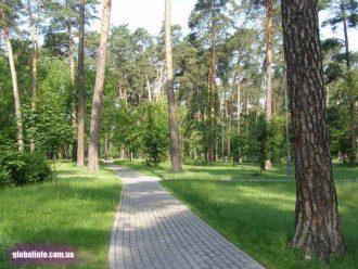 Киевский парк, иллюстрация