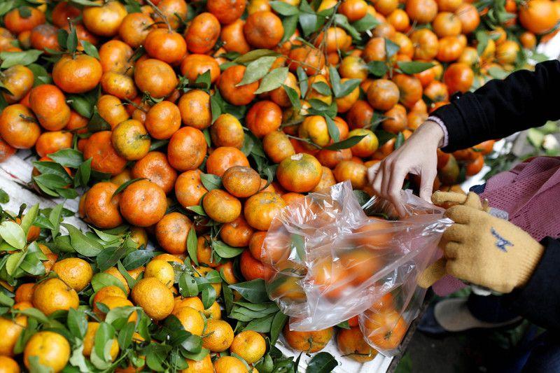 В РФ уничтожили турецкие мандарины