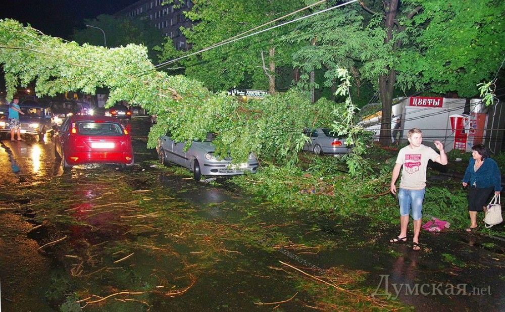 Ночной ураган рвал провода и крушил машины