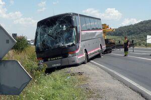 Бревно протаранило автобус