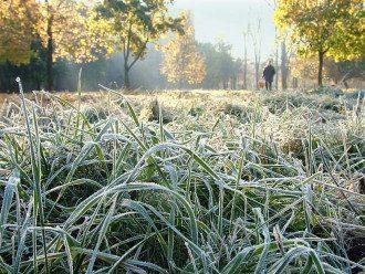 Погода на осінь 2020 в Україні - коли чекати сніг і морози