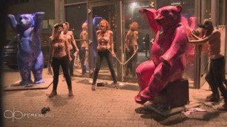 В Берлине активистки Femen пикетировали публичный дом