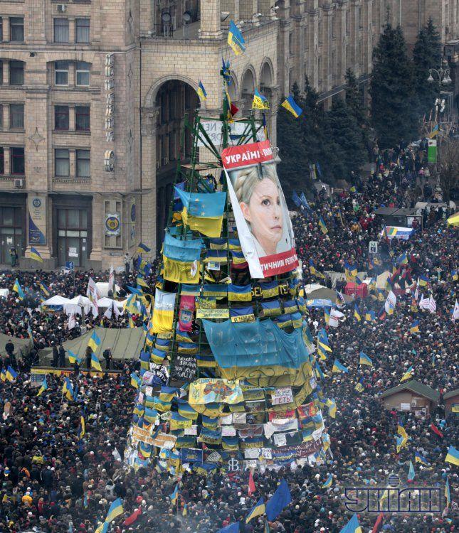 Портрет Юлии Тимошенко на елке на Евромайдане