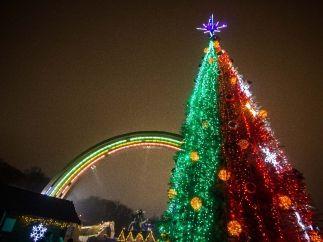 Новогодняя елка у арки Дружбы народов