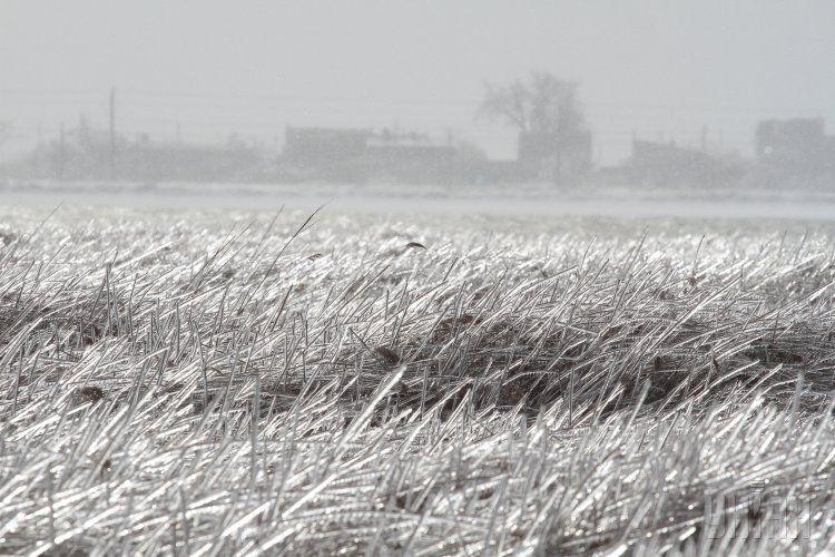 Крым заморозило