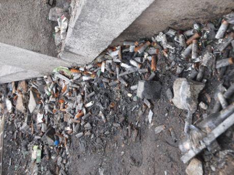 """На Грушевского после """"Беркута"""" нашли гильзы от патронов, которыми отстреливают животных"""
