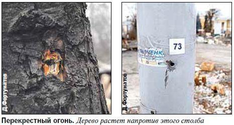 Майдановцев расстреливали с нескольких сторон
