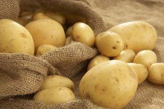 В Украине взлетают цены на овощи, поскольку их не хранят нормально, утверждает эксперт - Картофель цена