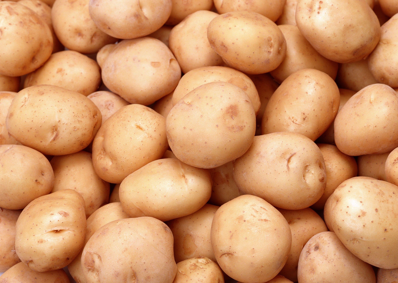 В Украине рекордно низкая цена на молодую картошку