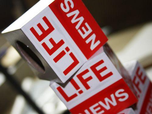 """LifeNews """"догавкался"""""""
