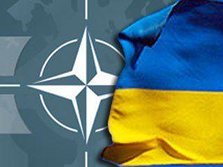 Украина будет двигаться в НАТО