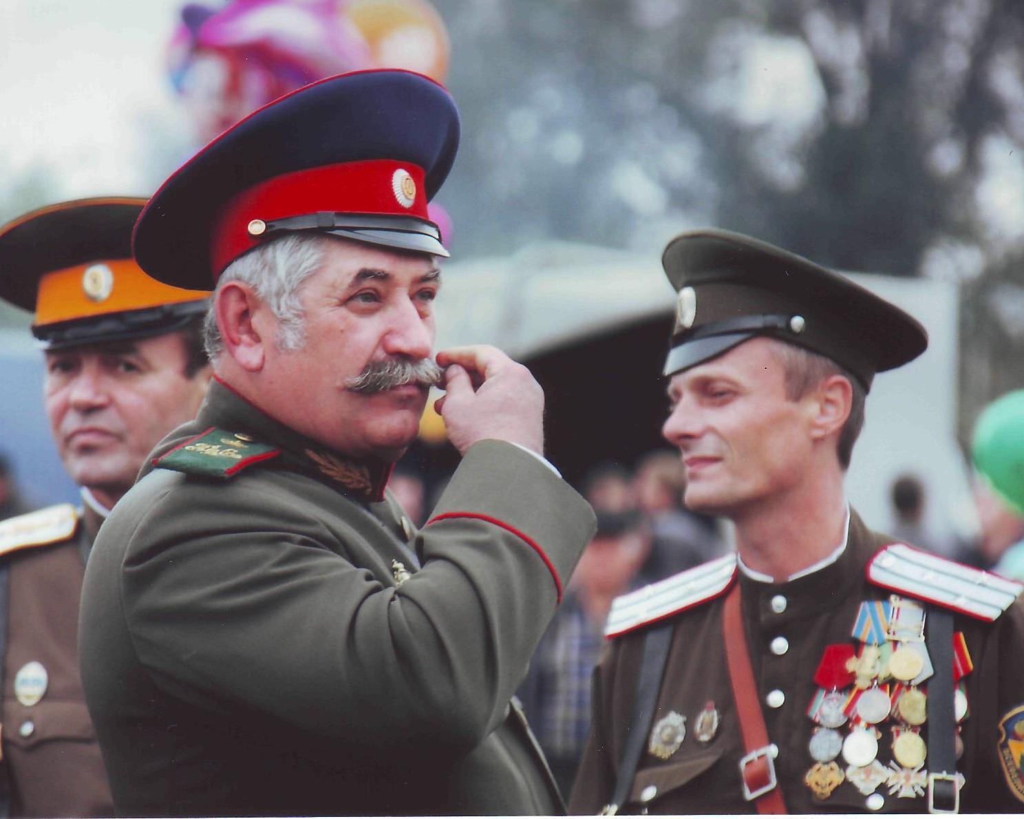 Николай Козицын, иллюстрация