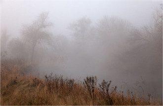 Туман, иллюстрация