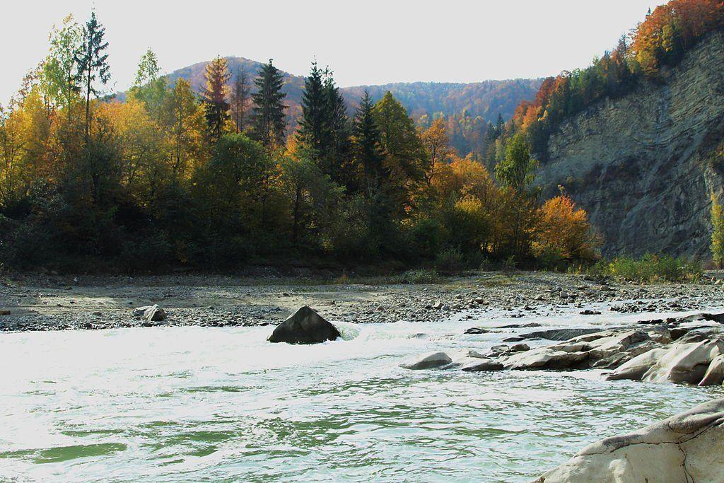 Река на Закарпатье
