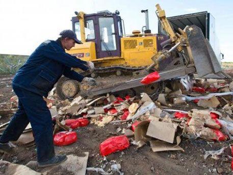 В РФ начали уничтожать продукцию из Турции и Украины