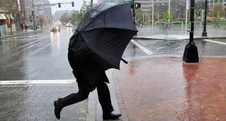 дощ, вітер, погода