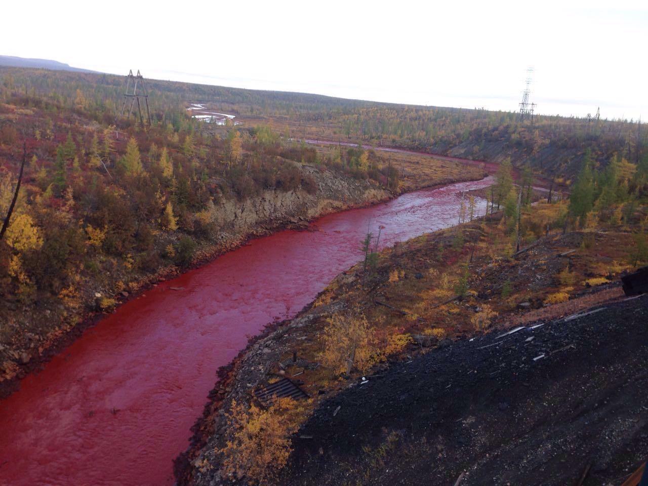 Под Норильском реки окрасились в кровавый цвет