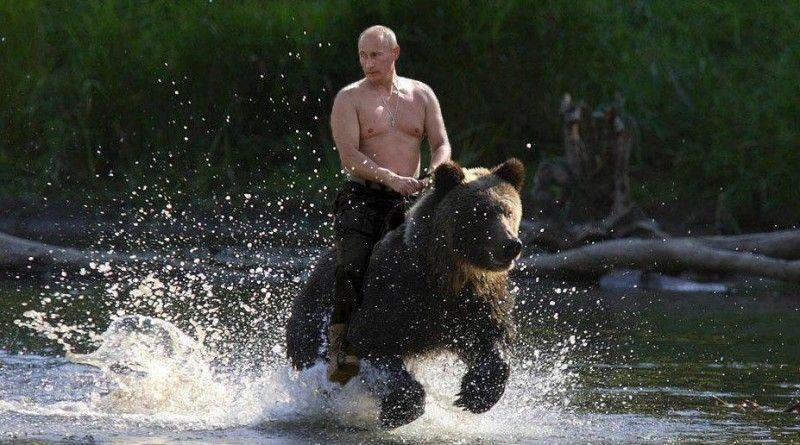 Путин, Медведь