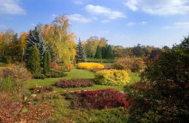 осень, Кривой Рог, ботсад