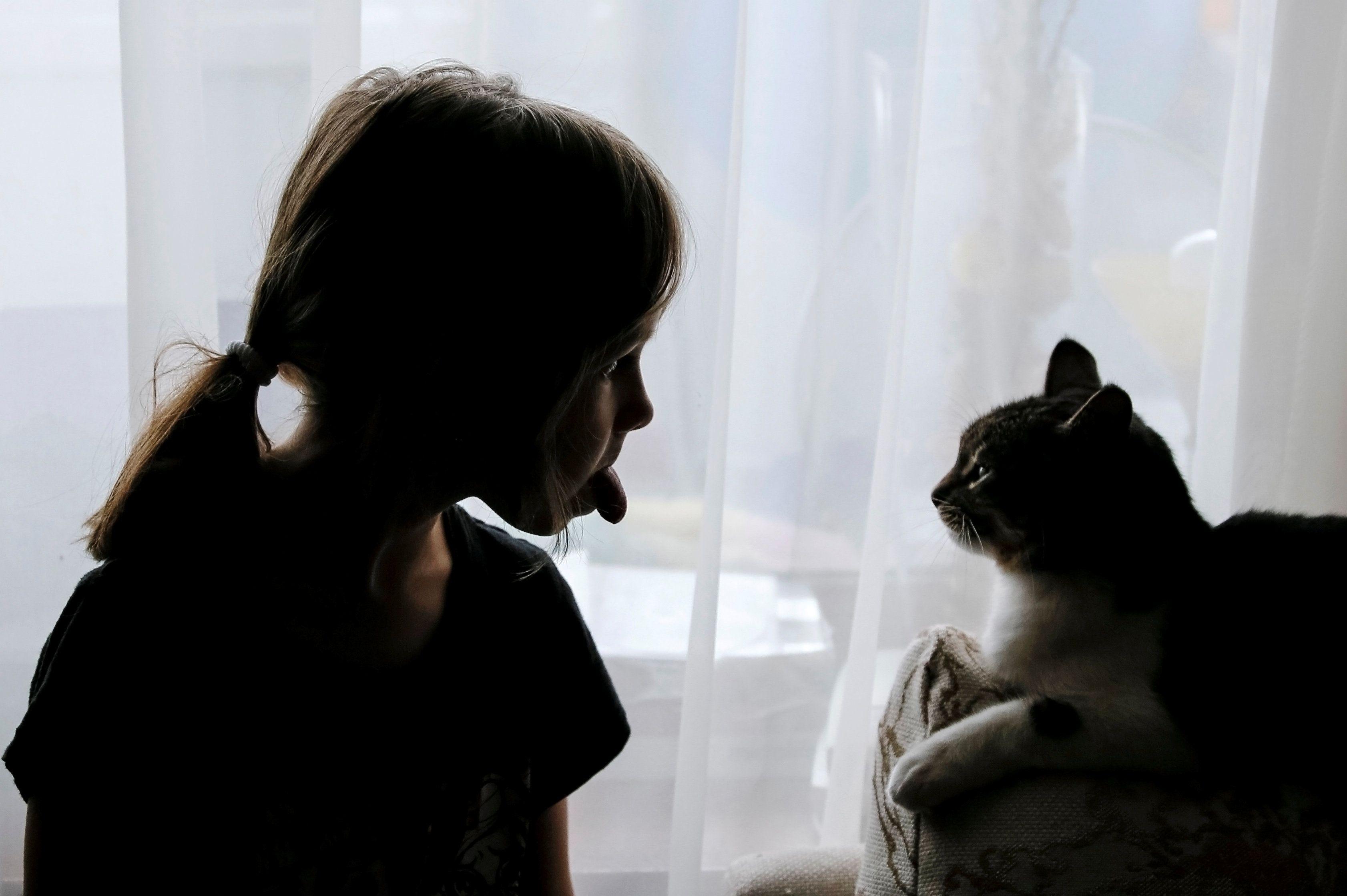 Ребенок и кот, иллюстрация