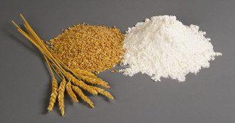 пшеница, мука