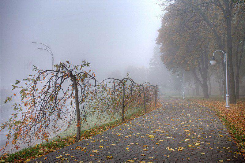 Осенний Киев, иллюстрация.