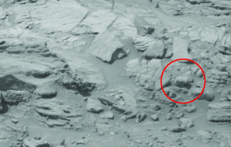 Фантазии уфологов: на Марсе обнаружили окаменевшие останки медведя