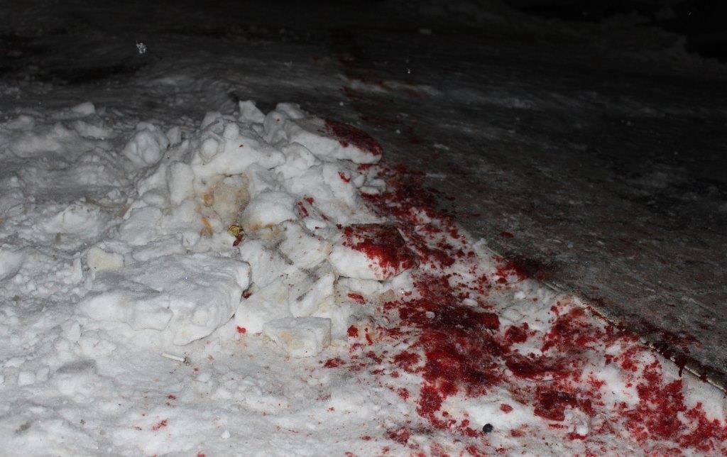 Суд арестовал участников конфликта в Олевске