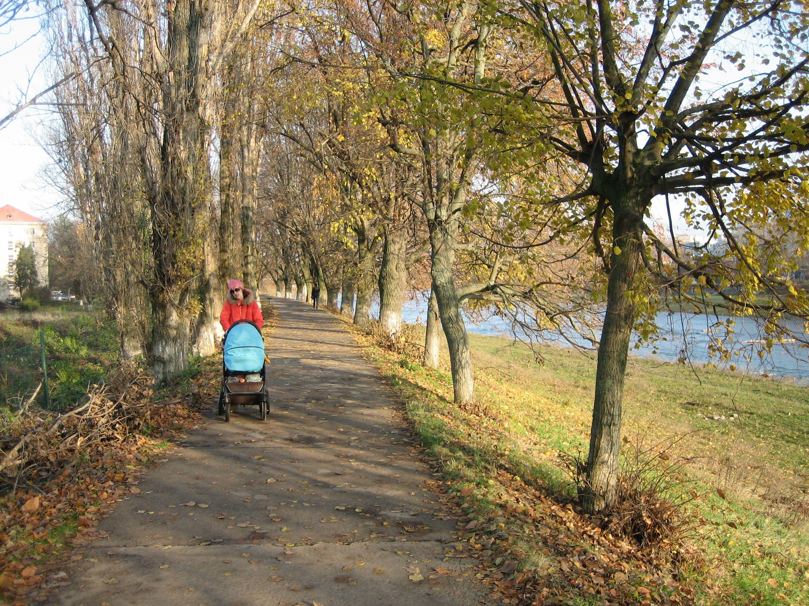 Липовая аллея - одна из достопримечательностей Ужгорода