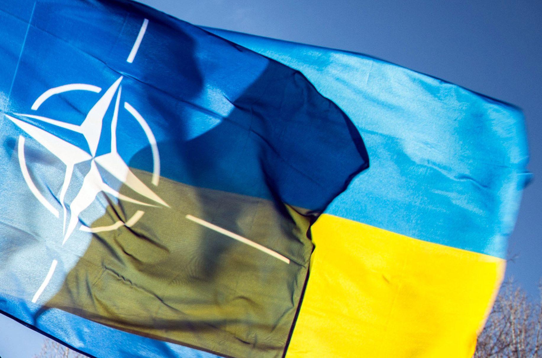 Флаги НАТО и Украины, иллюстрация