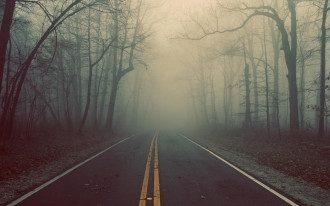 туман, весна, дорога, погода