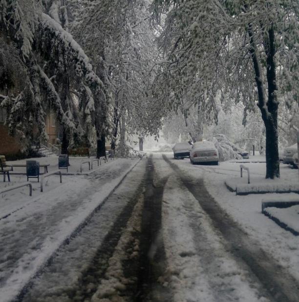 Снег в Харькове, иллюстрация