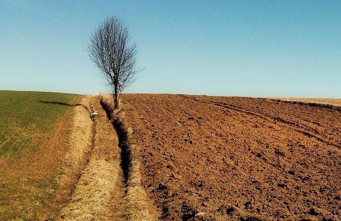 Еколог спрогнозував, що Україні років через 20 загрожує голод – Голод в Україні