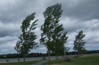 ветер, шторм, предупреждение