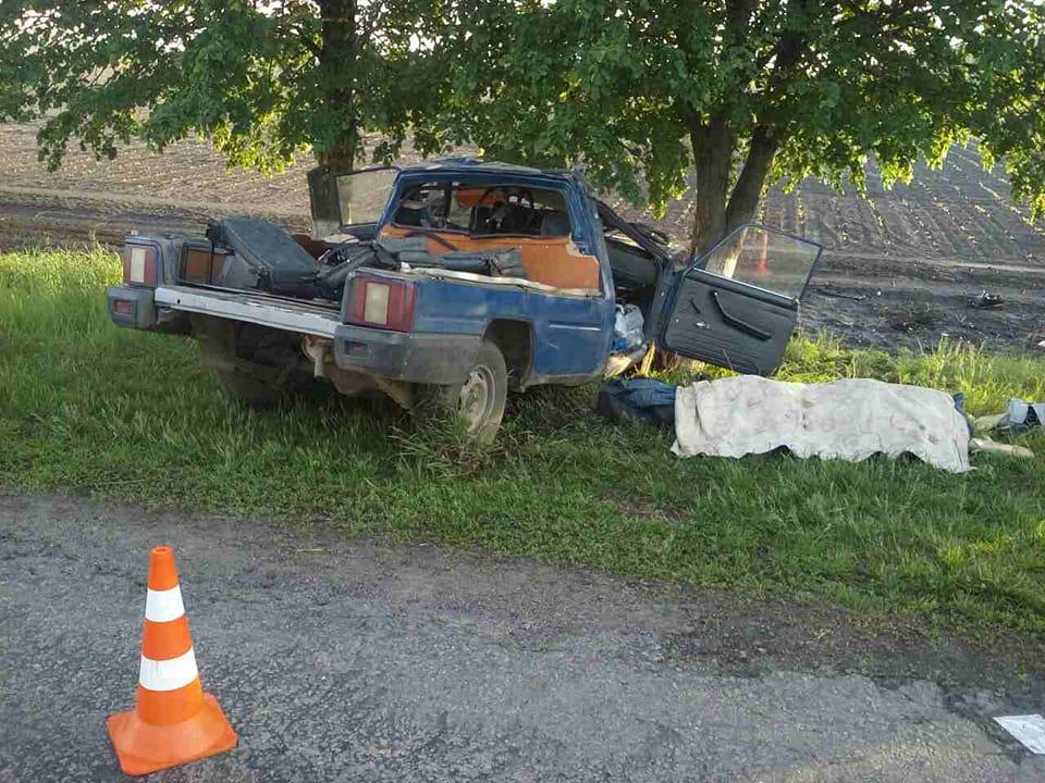 На Киевщине пикап слетел с трассы