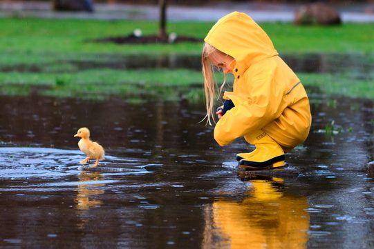 погода, дети, дождь, гроза,