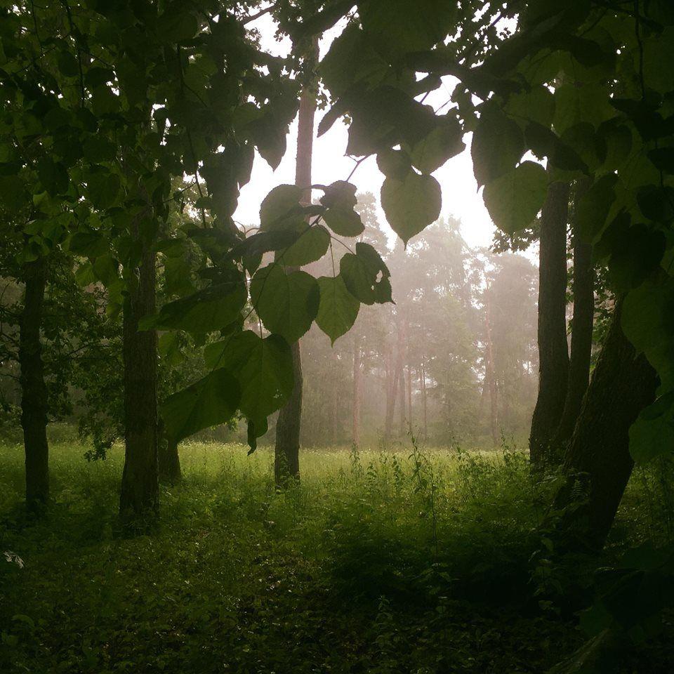 Дождь, Юрмала, погода, лето
