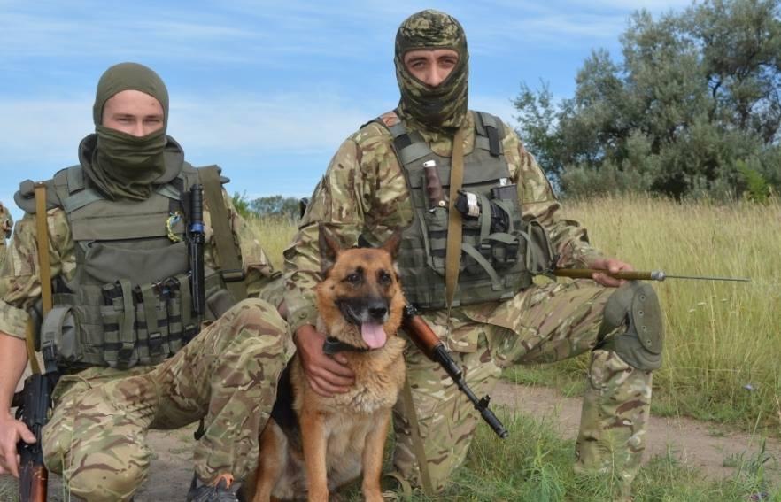 Силовики на Донбассе, иллюстрация.