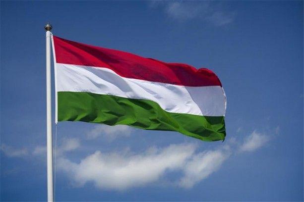 Флаг Венгрии, иллюстрация