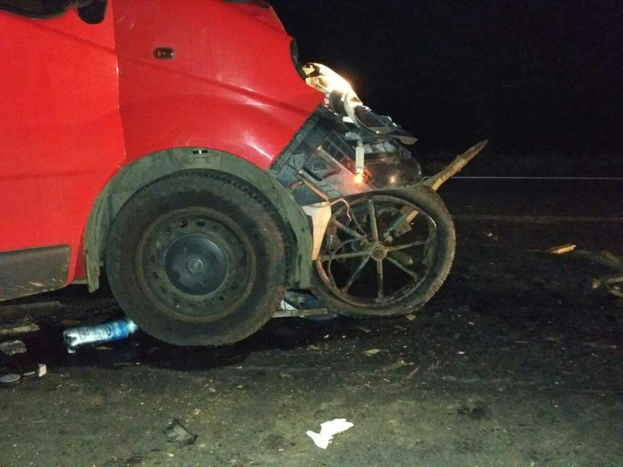 ДТП в Одесской области. Бус протаранил гужевую подводу, погибли трое