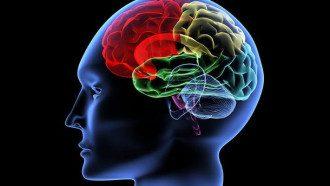 Для улучшения работы мозга, в частности, нужно двигаться правильно питаться и общаться, посоветовала Ульяна Супрун