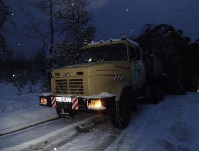 Ожидается, что дерево скоро будет в Киеве