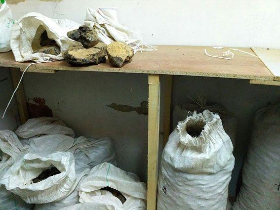 На Ровенщине изъяли тонну незаконно добытого янтаря на 10 миллионов гривень