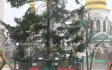 Главная елка страны уже стоит на Софийской площади