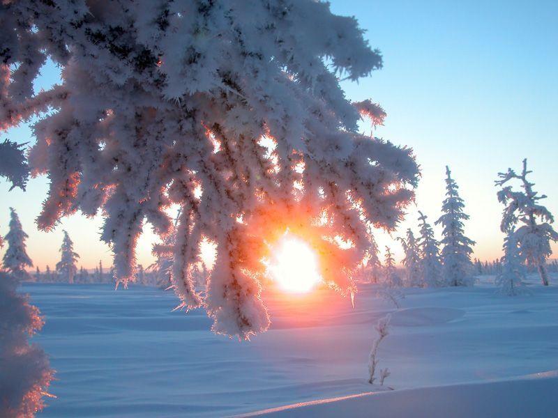 солнце, солнцестояние
