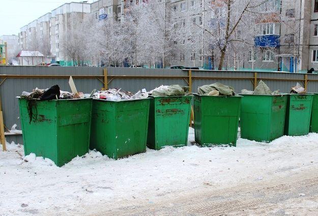В РФ у мусорника устроили толкучку