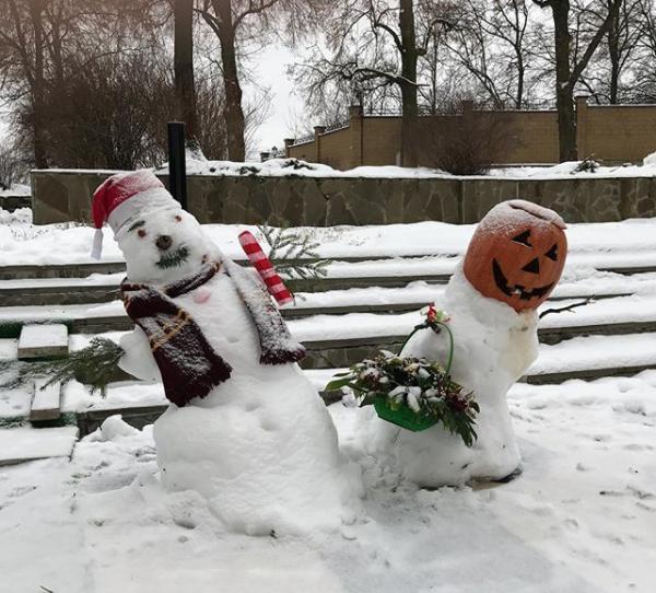 Снежное утро в деревне Фото: Instagram/Максим Галкин
